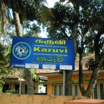 Karuvi changed its location on 4th March 2014